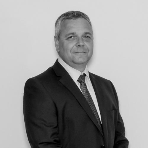 David Bolton, BSc (Hons)